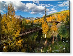 Telluride Fall Colors Acrylic Print by Michael J Bauer