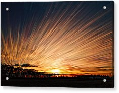 Ten Thousand Paths Acrylic Print by Matt Molloy