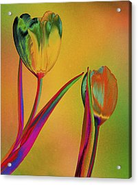 Tender Touch Acrylic Print