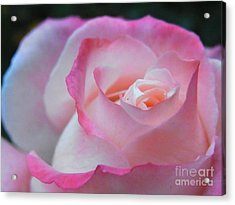 Acrylic Print featuring the photograph Tenderness Of The Heart by Agnieszka Ledwon
