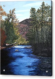 Tennessee A River Through The Woods Acrylic Print by Beth Parrish