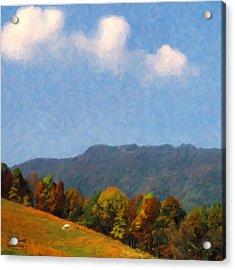 Acrylic Print featuring the digital art Tennessee Stud by Spyder Webb