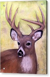 Tennessee Wild Life - Buck Acrylic Print by Annamarie Sidella-Felts