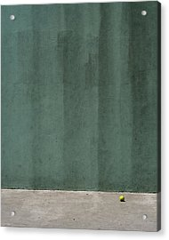 Tennis Ball Acrylic Print by Stuart Hicks