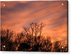 Acrylic Print featuring the photograph Tequila Sunset by Bill Swartwout