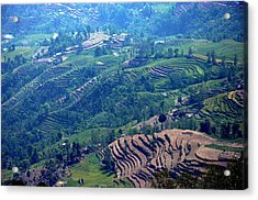 Terraced Slopes Acrylic Print by Gerard Goh