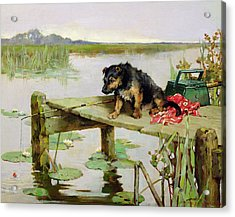 Terrier - Fishing Acrylic Print by Philip Eustace Stretton