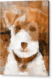 Terrier II Acrylic Print
