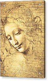 Testa Di Fanciulla Detta La Scapigliata Acrylic Print by Leonardo Da Vinci