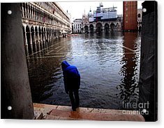 Testing The Waters Acrylic Print by Jacqueline M Lewis