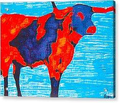 Texan Longhorn Acrylic Print by Robert Margetts