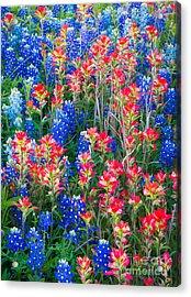 Texan Quilt Acrylic Print