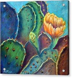 Texas Beauty  Pastel Acrylic Print by Antonia Citrino