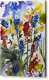 Texas Blue Bonnets And Indian Paintbrush Watercolor Acrylic Print