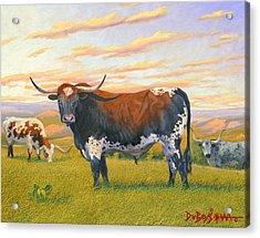 Texas Bred Acrylic Print