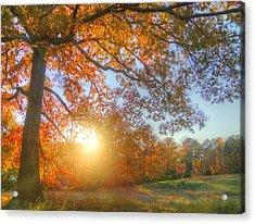 Texas Fall Colors 002 Acrylic Print