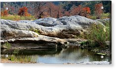 Texas Fall Colors Acrylic Print by David  Norman