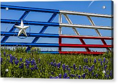 Texas Flag Painted Gate With Blue Bonnets Acrylic Print
