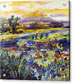 Texas Hill Country Bluebonnets And Indian Paintbrush Sunset Landscape Acrylic Print