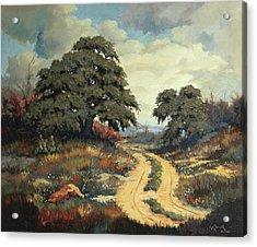 Texas Hill Country Acrylic Print by Bob Hallmark