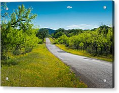 Acrylic Print featuring the photograph Texas Hill Country Road by Darryl Dalton