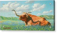 Texas Acrylic Print