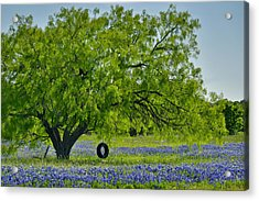 Acrylic Print featuring the photograph Texas Life - Bluebonnet Wildflowers Landscape Tire Swing by Jon Holiday