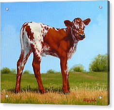 Acrylic Print featuring the painting Texas Longhorn New Calf by Margaret Stockdale