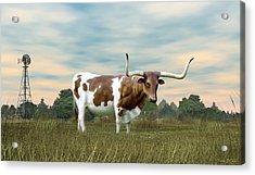 Texas Longhorn  Acrylic Print by Walter Colvin