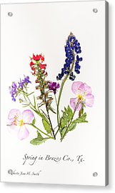 Texas Spring Flowers Acrylic Print