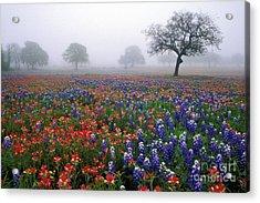 Texas Spring - Fs000559 Acrylic Print