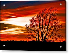 Acrylic Print featuring the pyrography Texas Sunset by Darryl Dalton