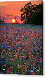 Texas Sunset Acrylic Print by Inge Johnsson