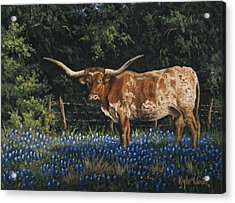 Texas Traditions Acrylic Print