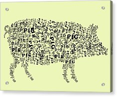 Text Pig Acrylic Print by Heather Applegate