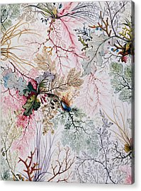 Textile Design Acrylic Print by William Kilburn