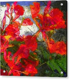 Textured Flamboyant Flowers - Square Acrylic Print