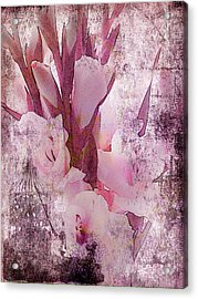 Acrylic Print featuring the photograph Textured Pink Gladiolas by Sandra Foster