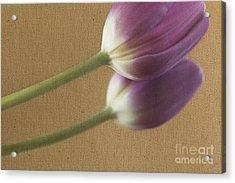 Textured Purpletulip Acrylic Print