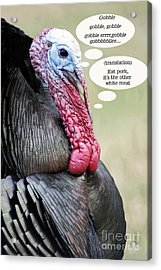 Acrylic Print featuring the photograph Thanksgiving Card Turkey by Gary Brandes