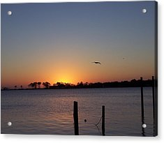 Acrylic Print featuring the photograph Thanksgiving Sunrise by Michele Kaiser