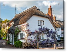 Thatched Cottage In Otterton Devon Acrylic Print by David Ross