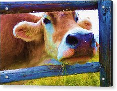 That's My Lunch Acrylic Print
