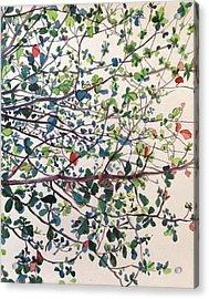 The Almond Tree Acrylic Print by Aditi Bhatt
