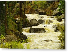 The Amsden River Wyoming Acrylic Print by Jeff Swan