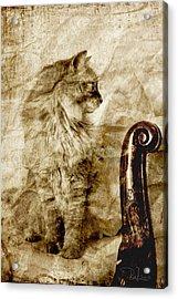 The Ancestors Acrylic Print