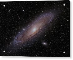 The Andromeda Galaxy Acrylic Print by Brian Peterson