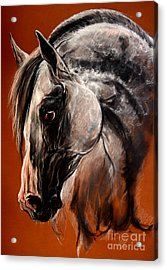The Arabian Horse Acrylic Print by Angel  Tarantella