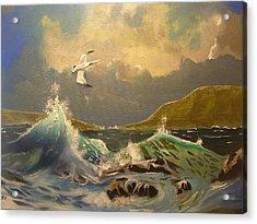 The Arctic Tern Acrylic Print