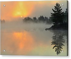 Acrylic Print featuring the photograph The Arrival by Gregory Israelson